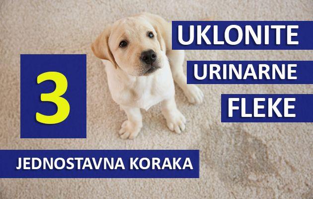 uklonite urinarne fleke u 3 jednostavna koraka